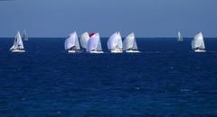 Regata cantábrica (alfonsocarlospalencia) Tags: regata spy azul santander barcos velas blanco competición esfuerzo fila horizonte cantabria mar abierto empopada 1000