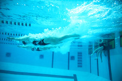 20171202-swimmers-diving-underwater-7K0A9209