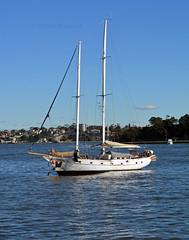Lavender Bay sailing yacht (PhillMono) Tags: nikon dslr d7100 ship boat vessel sydney harbour yacht sailing tall lavender bay reflection new south wales australia perspective creative imaginative
