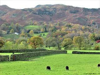 Lake District View..