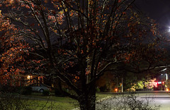 _MG_2710.CR2 (jalexartis) Tags: rhinorack pioneerplatform nightphotography night nightshots autumn lighting
