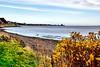 Grassy Beach (Geoff Henson) Tags: 500v20f landscape shore tranquil