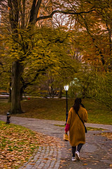 1341_0483FLOP (davidben33) Tags: newyork central park street streetphotos people nature trees bushes leaves colors green yellow blue sky cloud lake portraits women girl cityscape landscape autumn fall 2017 beauty