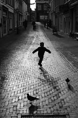 The Boy and the Pigeons (g e r a r d v o n k เจอราร์ด) Tags: artcityart art blackandwhite canon city canon5d3 expression eos europe flickrsbest fantastic flickraward grey holland herfst jeneverstad lifestyle ngc newacademy outdoor photos people reflection stad street schiedam this unlimited uit urban whereisthis where yabbadabbadoo