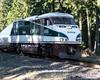Northbound Morning Amtrak Cascades Passing Through Marysville (AvgeekJoe) Tags: amtrak amtrakcascades d5300 dslr emdf59phi nikon nikond5300 train locomotive publictransportation rail railroad