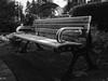 P1000265-Edit.jpg (Terry Cioni) Tags: panasonic gx85 tc burnaby dailywalk