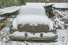Rocket man (adamkmyers) Tags: rocketman rocket88 olds88 oldsmobile classiccar abandonedcar rust