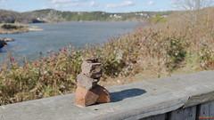 Sculpture devant les Rapides Réversibles, St-John, Nouveau-Brunswick, Canada - 3098 (rivai56) Tags: saintjohn newbrunswick canada ca stjohn nouveaubrunswick