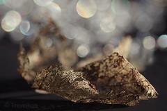 ***** Autumn Sparkle ***** (Trevellion) Tags: leaf autumn bokeh