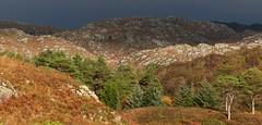Morar (Edinburgh Nette ...) Tags: landscapes october17 hills autumn lochs morar lochaber light