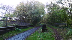 Former railway bridge over House Carr Lane, Silkstone Common   (Silkstone - Wath old railway)    October 2017 (dave_attrill) Tags: bridge housecarrlane great central railway electrified woodhead sheffield victoria manchester picadilly closed 1970 1955 stocksbridge engine transpennine upper don trail penistone wortley wadsley neepsend dunford thurgoland tunnel oxspring barnsley junction huddersfield allweather cycleway bridleway footpath remains silkstone 2016 1981 dove valley no1