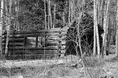 """Old Log Cabin From the 1800's. B&W • <a style=""""font-size:0.8em;"""" href=""""http://www.flickr.com/photos/17192414@N00/37555497845/"""" target=""""_blank"""">View on Flickr</a>"""