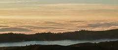 (Luminous☆West) Tags: sigma sd sdq sdqh quattro h sdquattroh foveon 85mm f14 14 dg art landscape x3i sfd sdqh1413x3i luminouswest luminous west 219 fog