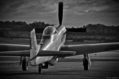 P51 Mustang (The Shark) (hype57) Tags: p51 mustang monochrome nikon d90 tamron warbird black white bw duxford iwm aircraft airplane theshark