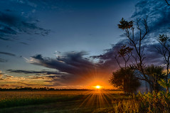 The Sun is the Star (tquist24) Tags: goshen hdr indiana nikon nikond5300 outdoor clouds evening farm geotagged rural sky sun sunburst sunset tree unitedstates
