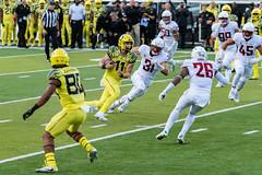 2017-10-07_Ducks vs Washington State0984 (boudreaudavid83) Tags: