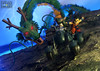 Goku Bogbog (Raichu 08) Tags: shf shfiguarts shenron deagon dragonball dragonballz mechacolle oolong bandai goku songoku dragonballgt dragonballsuper shenlong