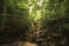 Dark Hollow - Shenandoah National Park (Virginia) (Andrea Moscato) Tags: andreamoscato america statiuniti usa unitedstates us landscape paesaggio parco park nature natura natural naturale national np nationalpark forest wood bosco cascata falls water freshwater acqua pond green orange light shadow luce ombre day rock stones roccia pietra trail appalachian vivid trees alberi waterfall leaves