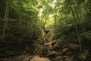 Dark Hollow - Shenandoah National Park (Virginia)