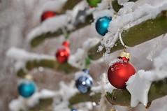 Alles bereit! Der Advent kann beginnen! (Uli He - Fotofee) Tags: ulrike ulrikehe uli ulihe ulrikehergert hergert fotofee nikon nikond90 november schnee ersterschnee winter