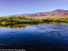 Owens Valley-33 (Denise Noelle Photography) Tags: owensriver bishopca sierranevadamountains monolake lonepine junelake mammothlakes