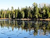 Cool Reflections (clickclique) Tags: river water trees reflections sky blue wet spruce sprucetrees fall nature shore grass outdoors nipisiquit nipiquisitriver calm l1gestalt naturescarousel