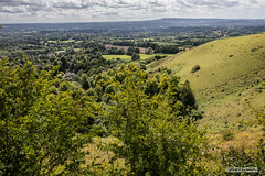 Colley Hill, north of Reigate,Surrey. (Scotland by NJC.) Tags: colleyhill surrey england uk leithhill theweald northdowns reigate hill تَلّ colina 小山 brdo kopec bakke forhøjning landskabet heuvel mäki colline hügel λόφοσ collina 丘 언덕 ås wzgórze deal холм backe เขาเตี้ยๆ tepe coğrafya пагорб đồi valley vale gorge dale glen strath cwm coombe rift faultline وادٍ 山谷 dolina údolí dal vallei valle laakso vallée tal 谷間 계곡