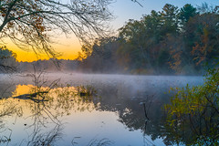 A1008032 (sswee38823) Tags: dawn sunrise pond mist carverma carver ma massachusetts m landscape water tree trees nature reflection reflections waterfont fall fallcolors sky country still leica leicam leicacamera leicaapo502 leicaaposummicronm50mmf2asphfle leicaaposummicronm50mmf2asph leicaaposummicronm50mmasph 50mm 50 50aposummicron leica50apo aposummicron50mmf2 aposummicron aposummicron50 aposummicronm1250asph apo summicron50mmapo summicron50mm summicron newengland seansweeney seansweeneyphotographer photography photograph photo outdoor outdoors outside plymouthdigitalphotographersclub pdp grass wood forest foliage
