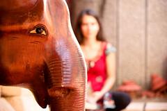 Quando vuoi fare un ritratto e ti passa davanti un elefante. Trivandrum, India, 2015 (Fabionik) Tags: 2015 india kerala trivandrum
