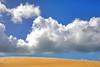 Little Sahara @ Kangaroo Island (jensen_chua) Tags: desert sand dune sanddune sahara sands australia southaustralia kangarooisland