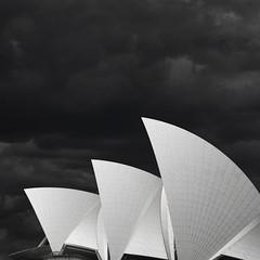 three (Explore #115) (s.f.p.) Tags: sydney opera house australia three nuns scrum bowl oranges architecture architectural photography modern white black sail circular quay square landmark fine art