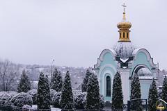 34. Блгв. кн. Александра Невского в Богородичном 06.12.2017