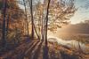 Misty sunrise (kubaszymik) Tags: fall autumn shadows mist misty sunrsue sunrise morning lake view mood moody dawn fog foggy canon gliwice poland silesia czechowice water trees path
