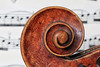 Macro Mondays : Member's Choice - Musical Instruments (erichudson78) Tags: macromondays memberschoicemusicalinstruments violon violin macro canoneos6d canonef100mmf28lmacroisusm spiral spirale bois wood musique music 7dwf