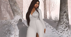 My winter wonderland. (Angels Oxgen) Tags: jeunebyrowne stealthic secondlife hair clothing addme