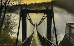 No end (AndyW Harz) Tags: nebel fog seilhängebrücke titanrt harz deutschland germany sachsenanhalt