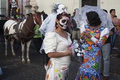 The Bride (jasongarland) Tags: dayofthedead diadelosmuertos diademuertos mexico