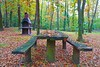 Autumn in Sapanca (yonca60) Tags: sapanca sakarya turkey forest wood autumn autumncolors fall sonbahar orman colors color autumnleaves leaves picnic