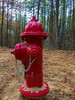 Red Hydrant (Eric.Ray) Tags: canon point shoot outdoors red hydrant suffolk county