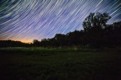 Star Showers and Firefly Clouds (Matt Molloy) Tags: mattmolloy timelapse photography timestack photostack movement motion fireflies night sky stars lightningbugs lines trails field grass pond trees burnthills ontario canada landscape nature countryside lovelife
