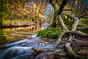 stairway to nowhere (visunaut) Tags: fulda landscape longexposure autumn river stairway mossy