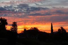 Sunrise in My Backyard this Morning (Life of David) Tags: sunrise camarillo california usa landscape beautiful world100f