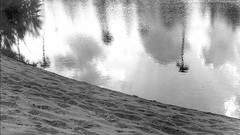 The Upside Down (RameshGandhi) Tags: reflection subjects water beach trees