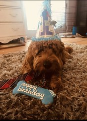 Jill's boy Brody on 1st birthday!