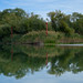 Skadar Lake (Dmitriy Sakharov) Tags: skadar lake montenegro europe nationalpark