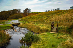 Trough of Bowland Autumn Drive 1. (alsimages1 - Thank you for 860.000 PAGE VIEWS) Tags: colours autumn valley mountain trees stream landscape panorama water green nature sky bowland forest photography road drive outdoors fells animals sheep viewpoint beauty