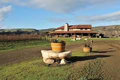 From the Vineyard (Esther Spektor - Thanks for 12+millions views..) Tags: vineyard california santabarbara sanfordwinery building architecture hill rock plant pot cloud autumn road estherspektor canon