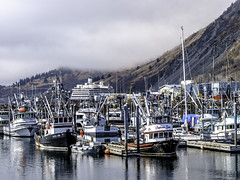 "Kodiak, Alaska • <a style=""font-size:0.8em;"" href=""http://www.flickr.com/photos/81866840@N06/38499532392/"" target=""_blank"">View on Flickr</a>"