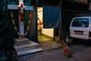 (robkrauss343) Tags: streetphotography streetportrait street india documentary candid color blac blackandwhite best losangeles streetphotgraphyartcolorlosangelescalifornia travel