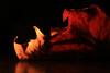 Old hand (alideniese) Tags: smileonsaturday onesingleleaf leaf dried flora dry crinkled macro closeup alideniese blackbackground light shadow red orange brown colour
